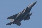 F-15D Eagle 78-0573 Retro 41