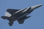 F-15D Eagle 78-0563 Retro 42