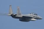 F-15D Eagle 80-0057 Retro 52