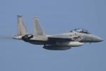 F-15D Eagle 78-0561 Retro 53